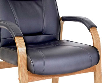 Occasional Leather Chairs
