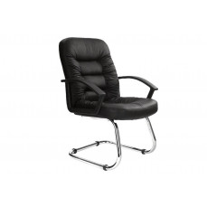 Bartlett leather faced visitor chair