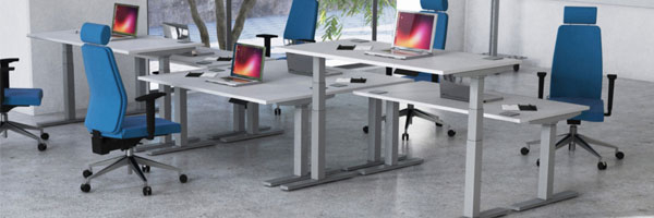 Vitali Sit & Stand (Silver Legs)