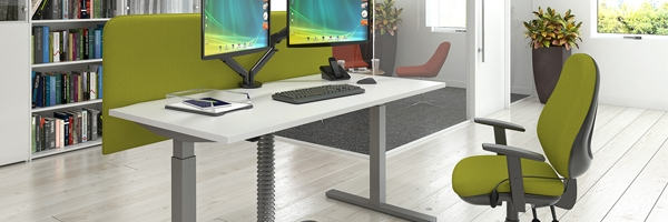 Ascend Sit & Stand