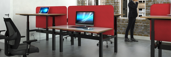 Ascend Deluxe Sit & Stand