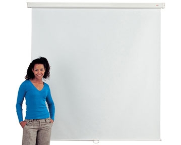Mounted Projection Screens
