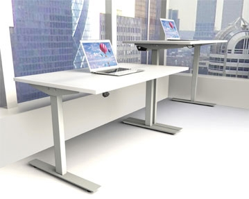 Proteus Sit & Stand