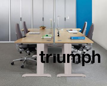 Triumph Everyday