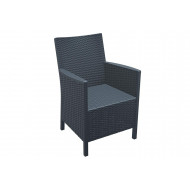 Next-Day Calimpa Arm Chair