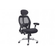 Mandy Executive Mesh Back Chair