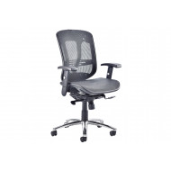 Minsk Mesh Back Executive Chair