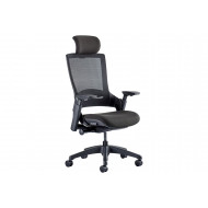 Perotti Mesh Back Executive Chair With Headrest