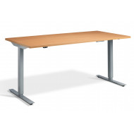 Williams Single Motor Height Adjustable Desks