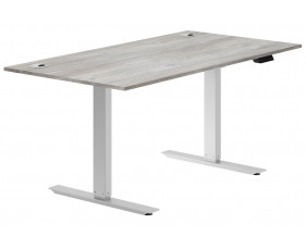 Delgado Sit & Stand Desk (Platinum Oak)