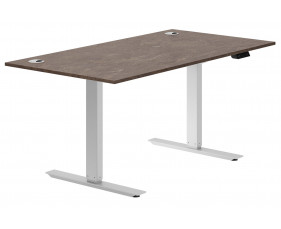 Delgado Sit & Stand Desk (Pitted Steel)