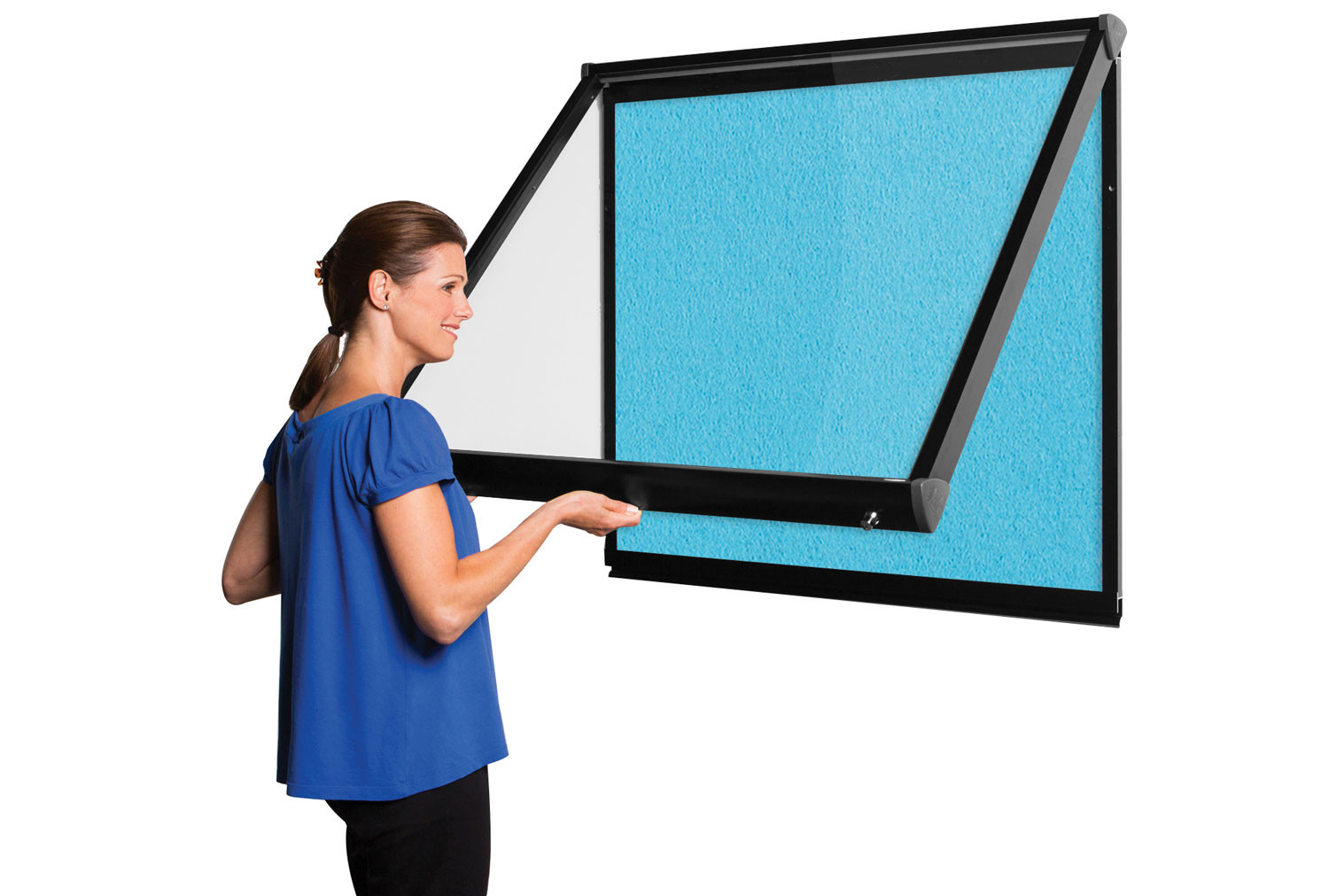 Shield Coloured Frame Showcase With Top Hinged Doors