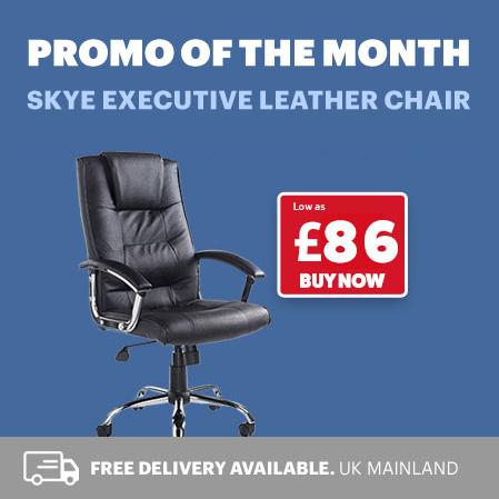 Skye Leather Chairs